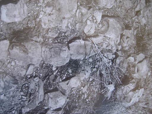 2009-04_au-outback_049.JPG