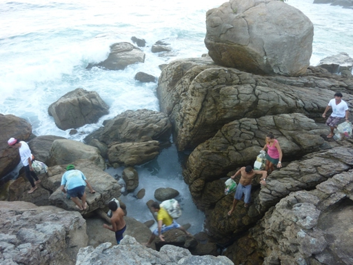2012-05-04_exped-report_ilha-grande (22).JPG