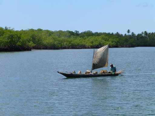 2012-09_toptotop-annual-report_brazil-camamu-saphino_local-sailor.JPG