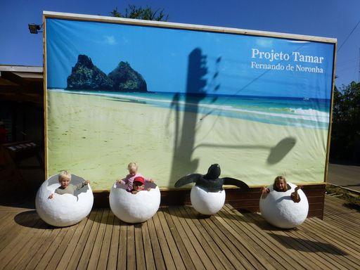 2012-10-12_Brasilien_FernandoDeNoronha_TurtleExibition.jpg