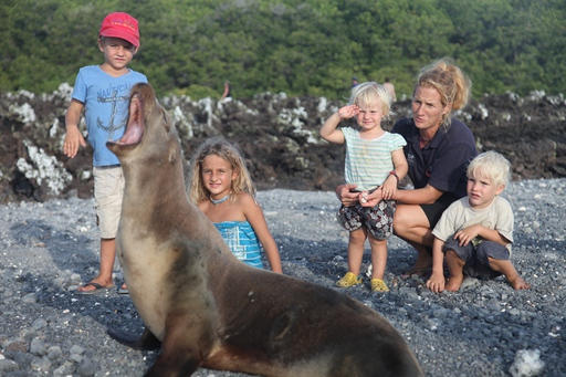 2013-04-14_pacific-passage_galapagos-hawaii_seal-family.JPG