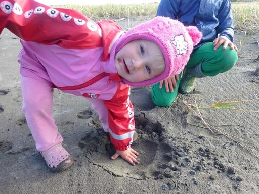 2013-09-29_usa-alaska-cordova_alegra-bear-track.JPG